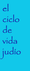 expo_ciclodevida